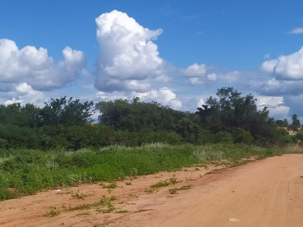 Mata onde o corpo foi encontrado — Foto: Polícia Militar / Divulgação