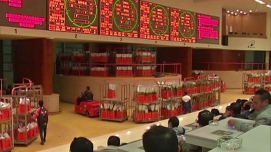 Pelo Mundo: sistema de mercado de flores asiático parece uma bolsa de valores