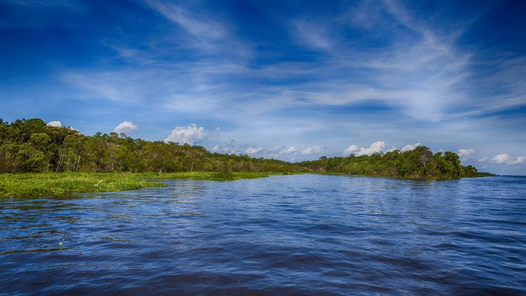 Preservação da Amazônia é essencial para a agricultura brasileira (Foto: Wikimedia Commons)