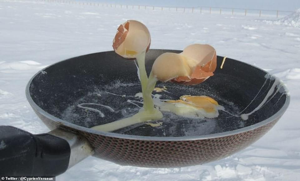 Ovos mexidos, fritos ou congelado? (Foto: Cyprien Verseux/Twitter)