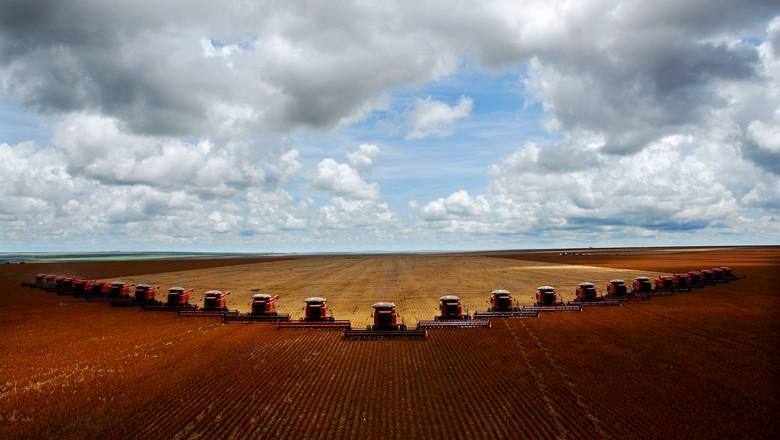 cana-colheita (Foto: José Medeiros/Ed. Globo)
