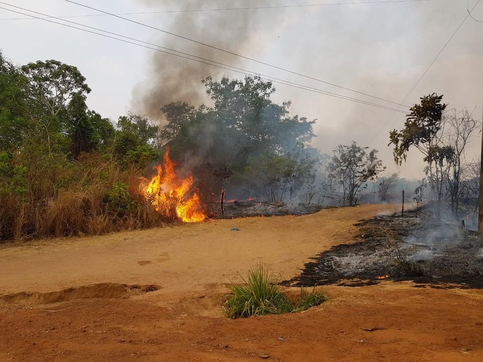 Fogo também avançou para uma região de mata no entorno do Rio da Casca. — Foto: Divulgação