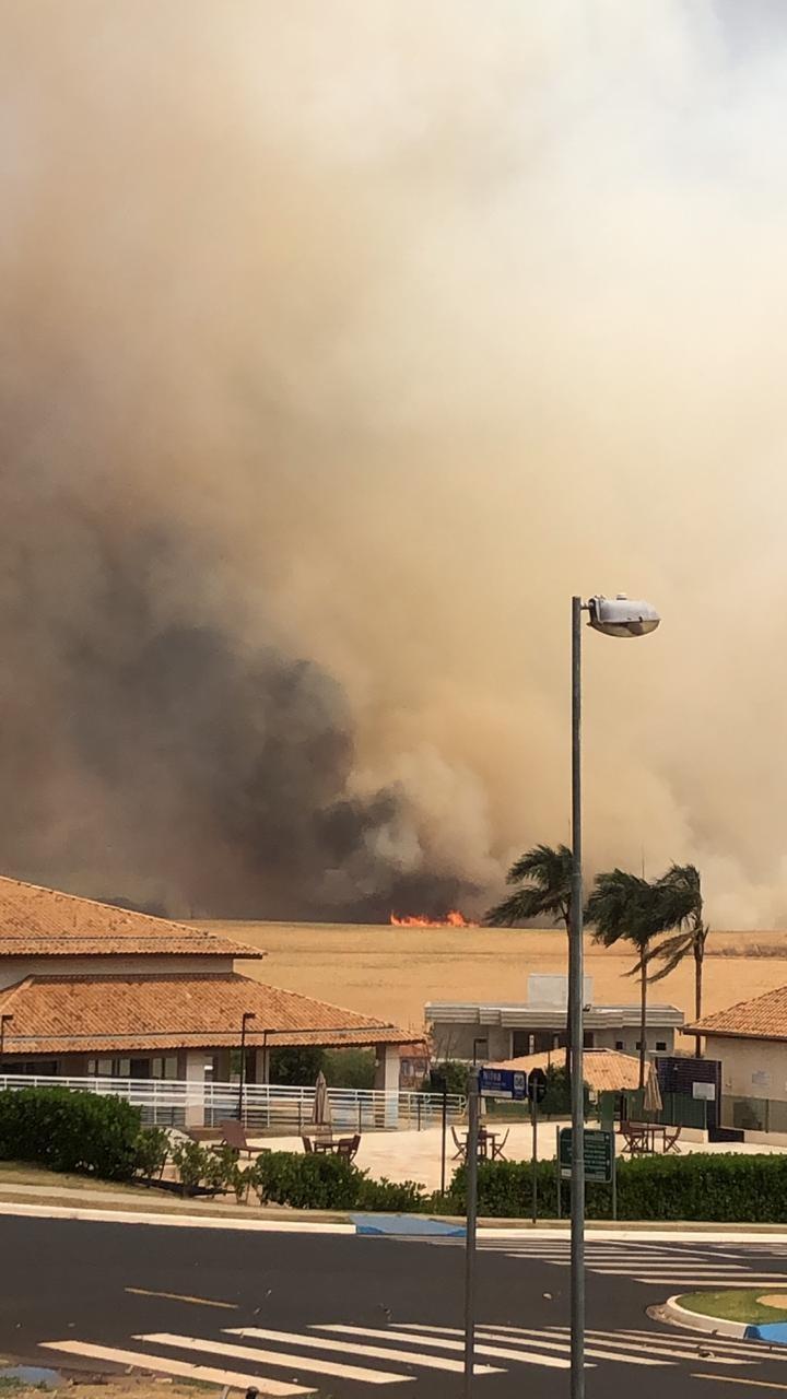 Incêndio em área verde se aproxima de condomínios em Ribeirão Preto; bombeiros estão no local