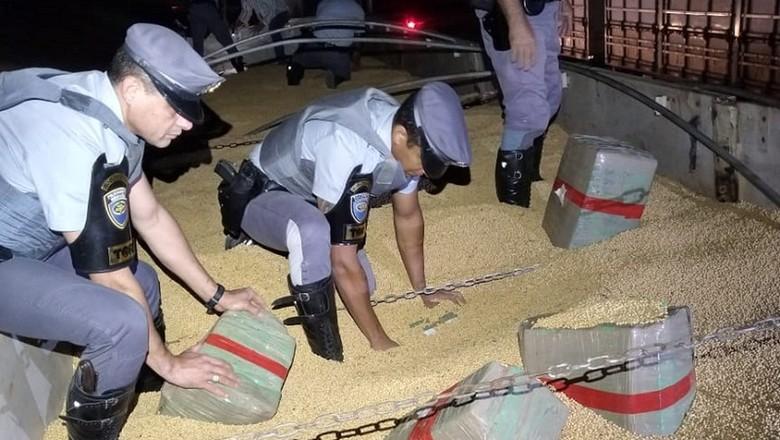 PM_apreensão_maconha_policia (Foto: SSP/Divulgação)