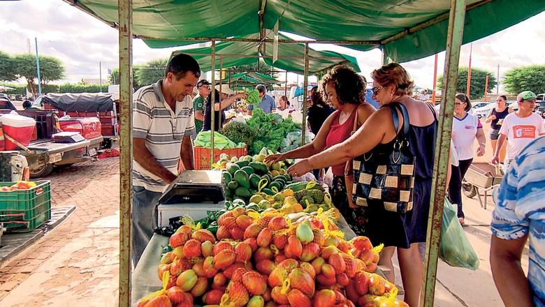 orgânicos - agricultura familiar (Foto: Reprodução/TV Globo)