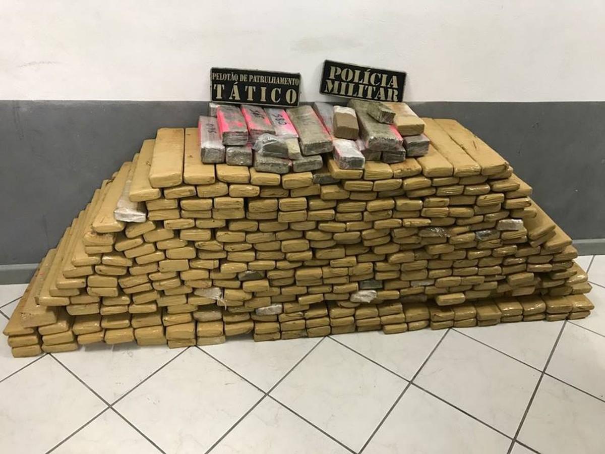 Polícia apreende cerca de 300 quilos de maconha em São José