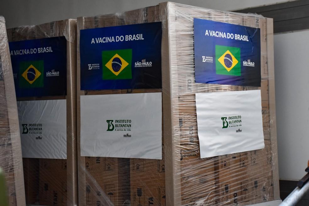 Caixas com doses da vacina Coronavac, do Instituto Butantan, contra a Covid-19 (Coronavírus), são entregues ao PNI (Programa Nacional de Imunizações) do Ministério da Saúde.  — Foto: ROBERTO CASIMIRO/FOTOARENA/ESTADÃO CONTEÚDO