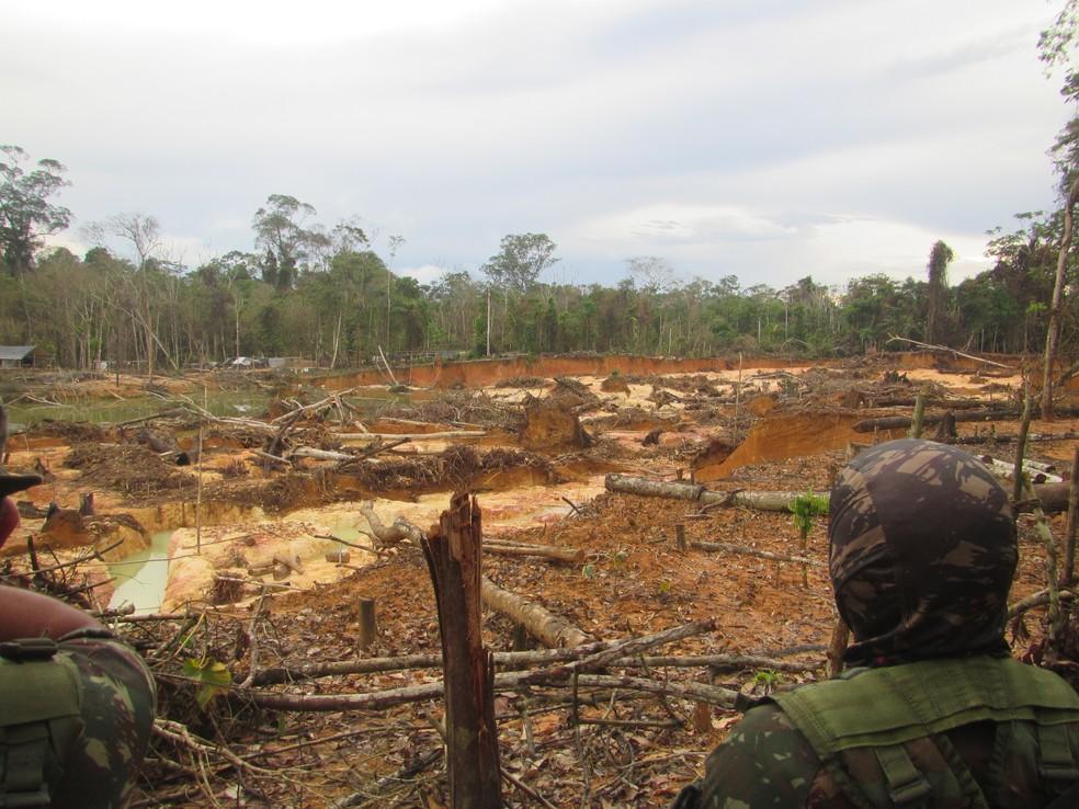 Operação Walopali foi coordenada pela Funai e ocorreu para que fosse reinstalada uma base de proteção etnoambiental (Bape)  — Foto: Funai/Divulgação