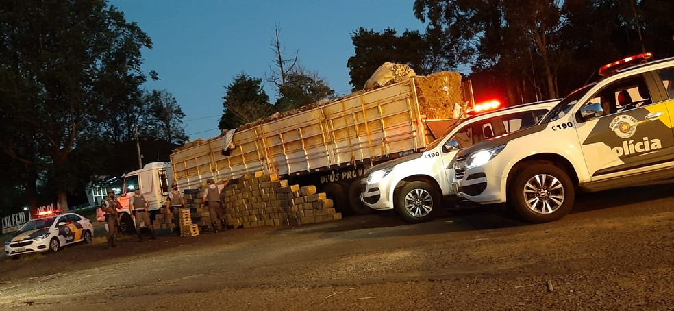 Grande quantidade de droga foi apreendida nesta segunda-feira (3) — Foto: Polícia Rodoviária