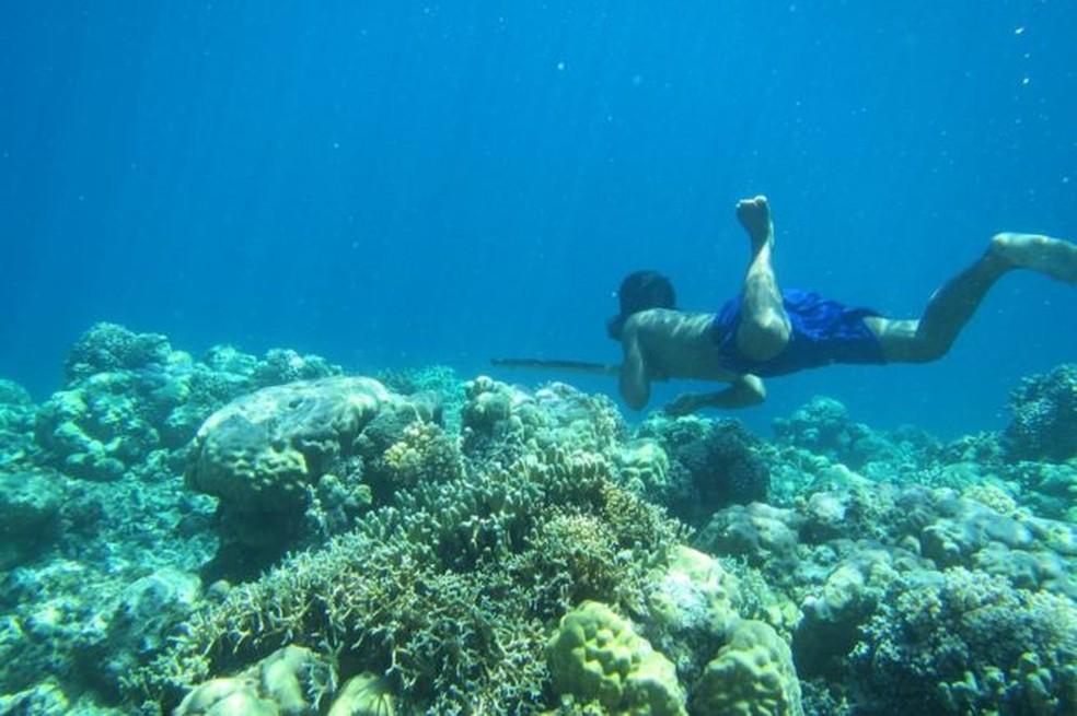 O povo bajau sobrevive coletando crustáceos do fundo do mar (Foto: MELISSA ILARDO)