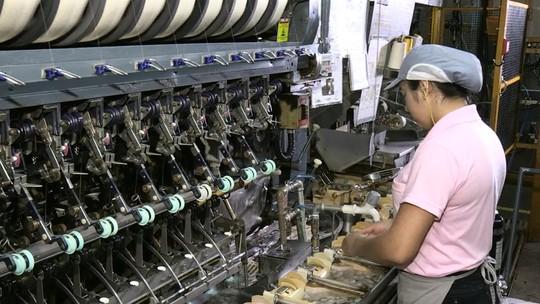 Produção de fio de seda cresce no Paraná e aumenta exportação