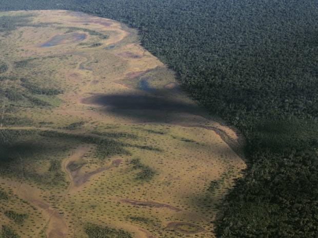 Xingu1 (Foto: Ueslei Marcelino/Reuters)