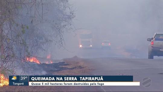 Quase 5 mil hectares são destruídos pelo fogo