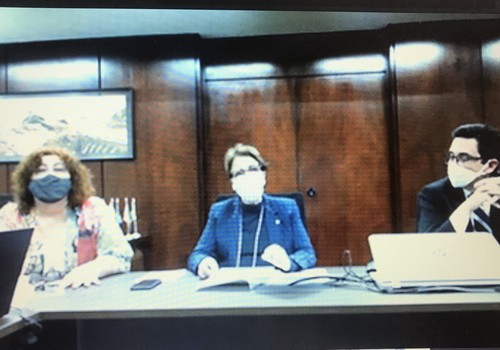videoconferencia-tereza-cristina (Foto: Divulgação/Mapa )