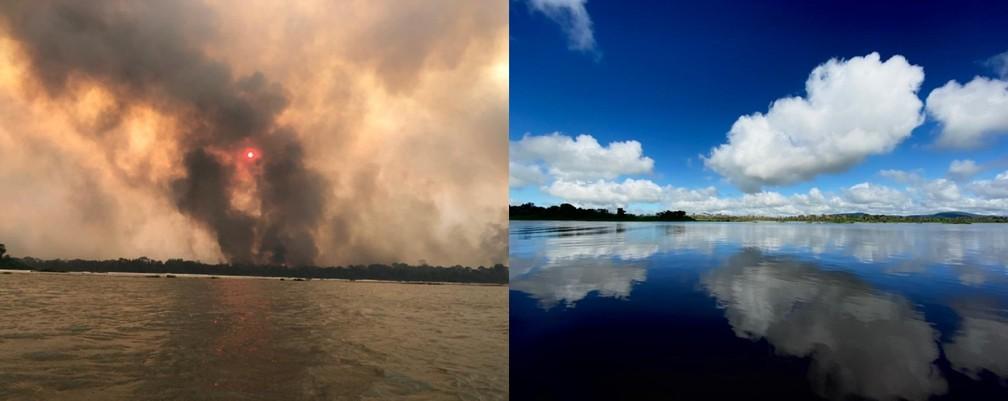 Imagens mostram o mesmo ponto do Pantanal em 2020 com as queimadas e em 2021, o bioma mostrando o poder de resiliência.  — Foto: Lucas Lélis