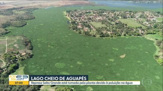 Salto Grande: 5% dos moradores do entorno lançam esgoto nas águas de forma irregular