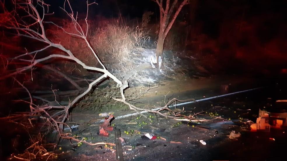 Suspeita é que o motorista da van tentou desviar da árvore queimada que estava na pista em Patos de Minas (MG), segundo a PRF  — Foto: Polícia Rodoviária Federal/Divulgação