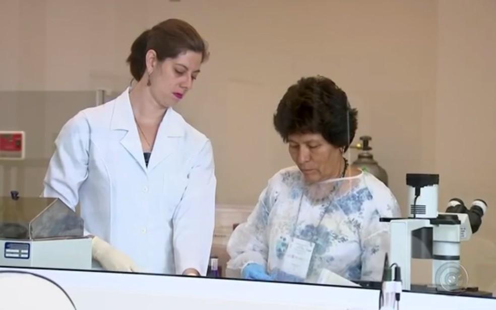 Pesquisa é feita na Famerp, Faculdade de Medicina de Rio Preto (Foto: Reprodução/TV TEM)