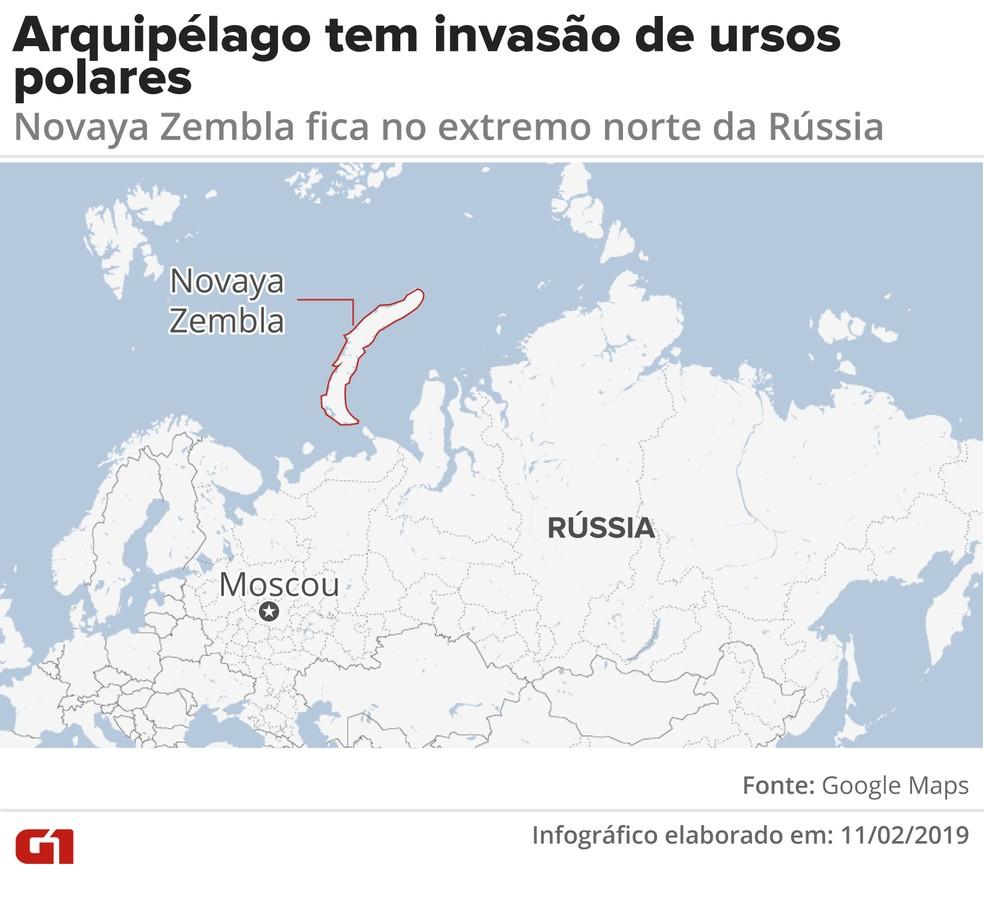 Arquipélago tem invasão de ursos polares — Foto: Infografia: Karina Almeida/G1