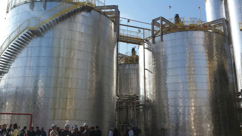 Renovabio deve demandar maior produção de etanol e abertura de novas usinas até 2030 (Foto: Claudia Assencio/G1)