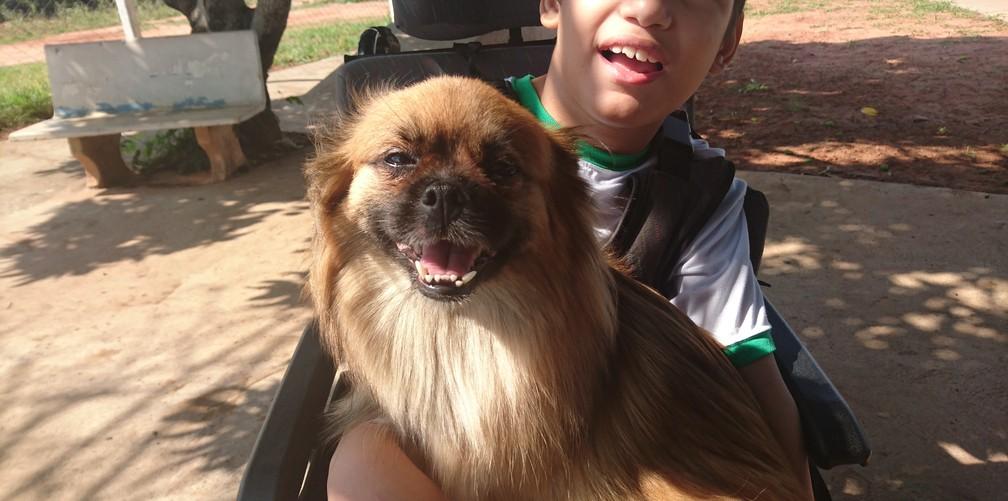 Manu é uma das cadelas voluntárias do projeto Pet Terapia da Apae Bauru (Foto: Tiago de Moraes / G1)