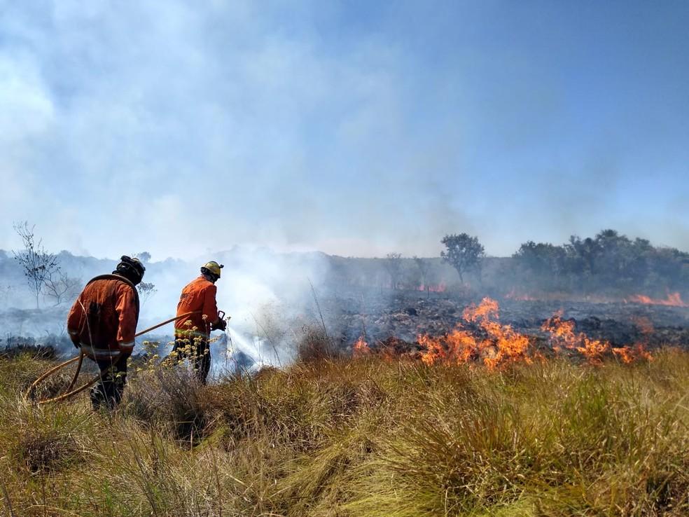 Incêndio na Área Alfa da Marinha do Brasil, em Santa Maria, no Distrito Federal — Foto: Corpo de Bombeiros do DF/Divulgação