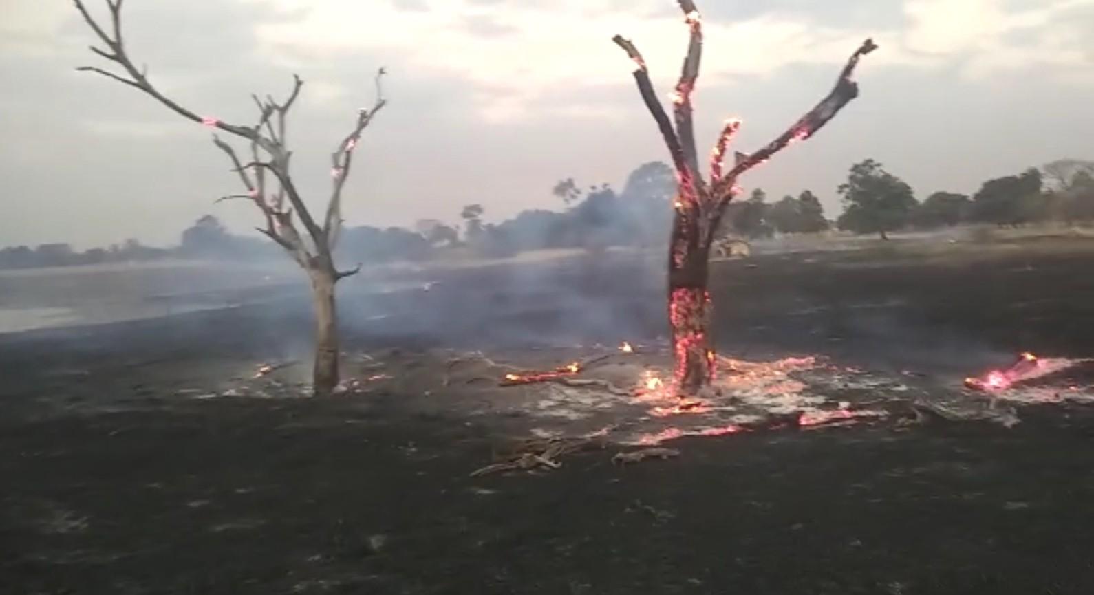 Bombeiros combatem queimadas em cidades da região noroeste paulista