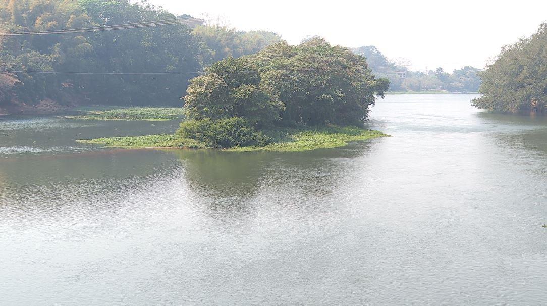 Nível do aquífero Guarani em Ribeirão Preto, SP, cai 120 metros nos últimos 71 anos, diz estudo