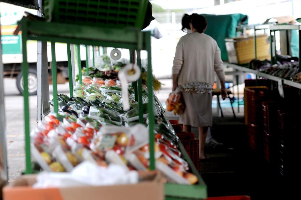 Agricultura familiar é responsável pela maioria dos orgânicos produzidos no DF (Foto: Gabriel Jabur/Agência Brasília)