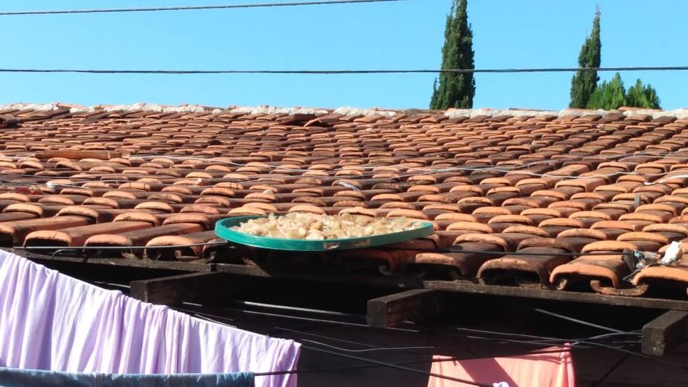 Carne era deixada secando no telhado de casa em Goiânia — Foto: Polícia Civil/Divulgação