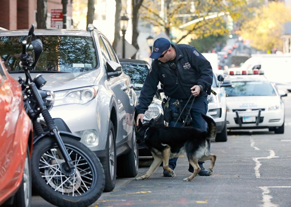 Um cão da polícia examina veículos ao longo da rua após ataque em ciclovia nesta terça-feira, em Nova York (Foto: Shannon Stapleton/Reuters)