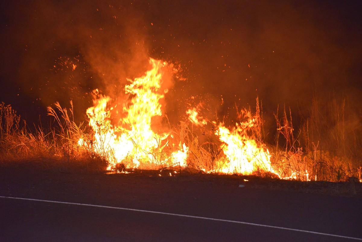 Roraima concentra quatro municípios com maior número de queimadas do Brasil, aponta Inpe