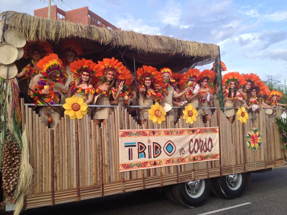 Caminhão da Tribo do Corso é o campeão do Corso 2014 — Foto: Gilcilene Araújo/G1