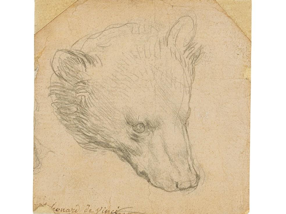 """""""Cabeça de Urso"""", de Leonardo Da Vinci — Foto: Christie's2021 via Reuters"""