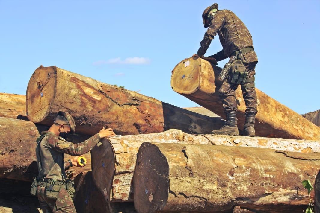 Madeireiras são alvo de ação contra extração ilegal de madeira de reserva indígena de RO thumbnail