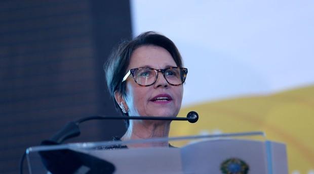 A ministra da Agricultura, Tereza Cristina (Foto: Agência Brasil)