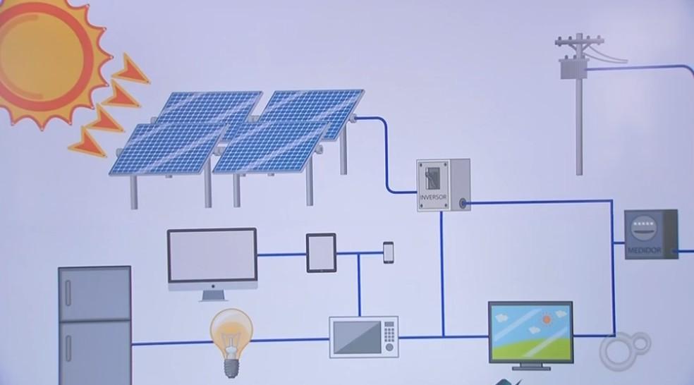 Empresários do ramo de placas solares falam sobre o equipamento — Foto: Reprodução/TV TEM