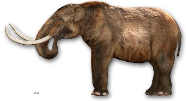Recriação de mastodonte, espécie que pertence à família dos mamutes (Foto: Dantheman9758/Creative Commons)