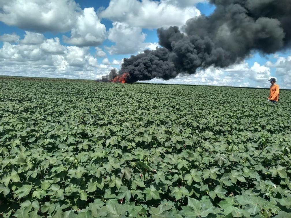 Avião incendiou e ficou destruído  — Foto: Divulgação