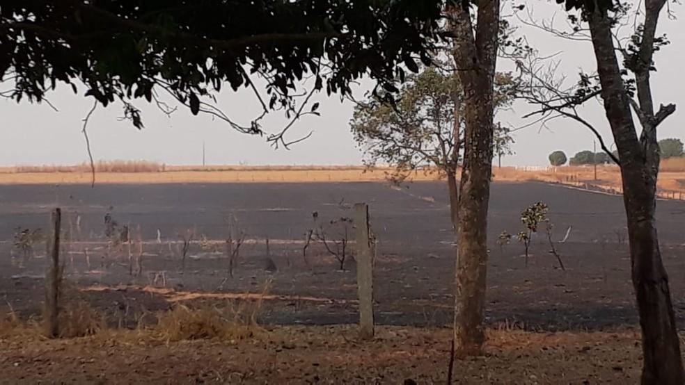 Regiões de lavoura foram destruídas — Foto: Prefeitura de Nova Ubiratã