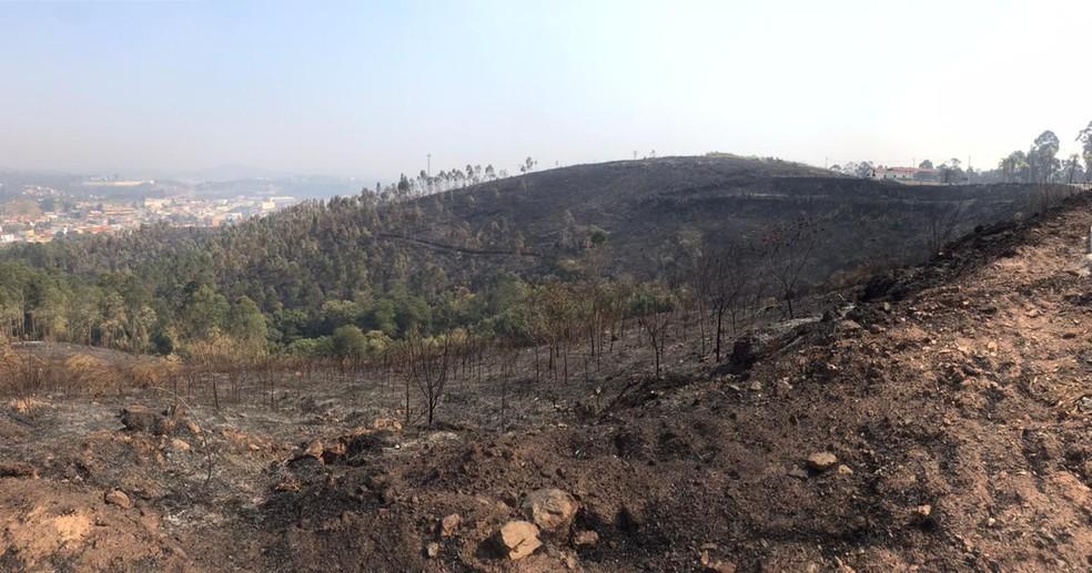 Incêndio de grandes proporções atinge área de mata em Araçariguama (SP) — Foto: Mayara Corrêa/TV TEM