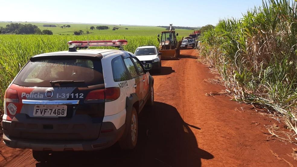 Nove veículos foram localizados em uma área de canavial  — Foto: Adolfo Lima/TV TEM