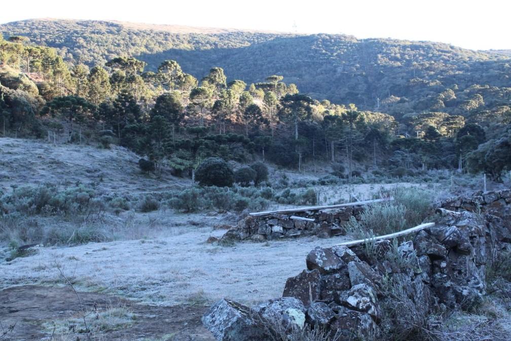 Campos cobertos por geada em Urupema — Foto: Marleno Muniz Farias/Prefeitura de Urupema