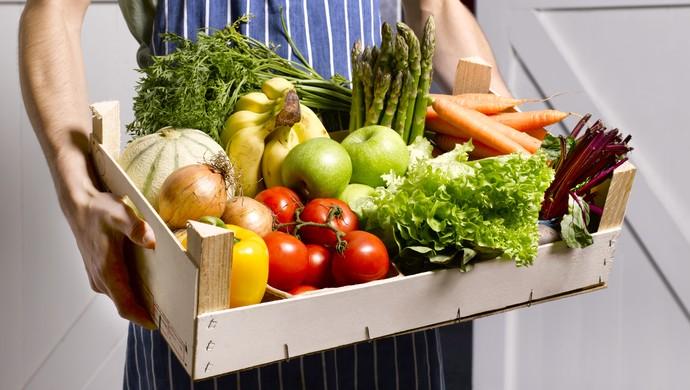 Resultado de imagem para lista de quais são os alimentos transgênicos