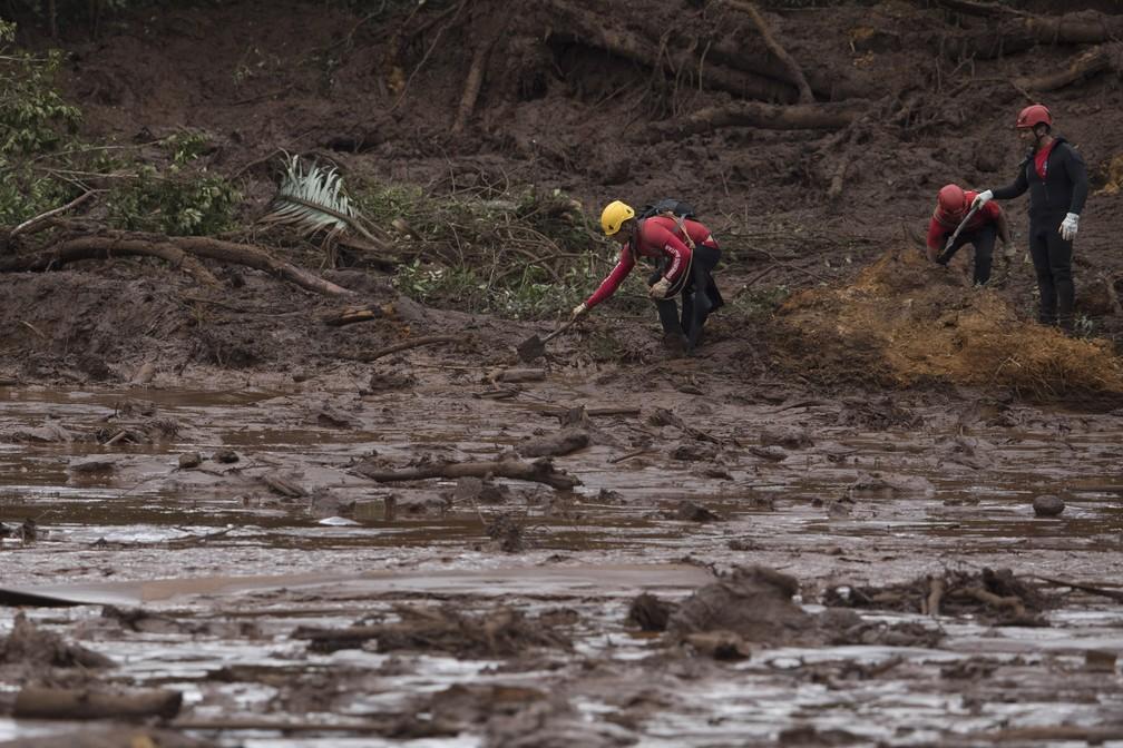 Bombeiros fazem buscas em meio à lama depois do rompimento da barragem da Vale em Brumadinho. — Foto: Leo Correa/AP