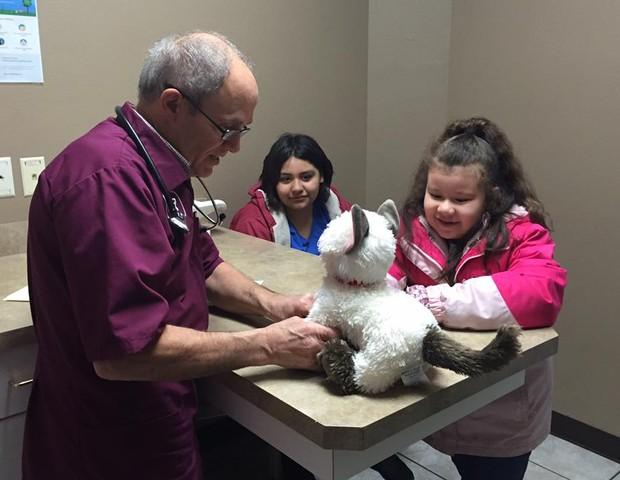 Dr Maioer examinando Donnie em seu consultório (Foto: Pioneer Veterinary Clinic/Susie Efigenio)