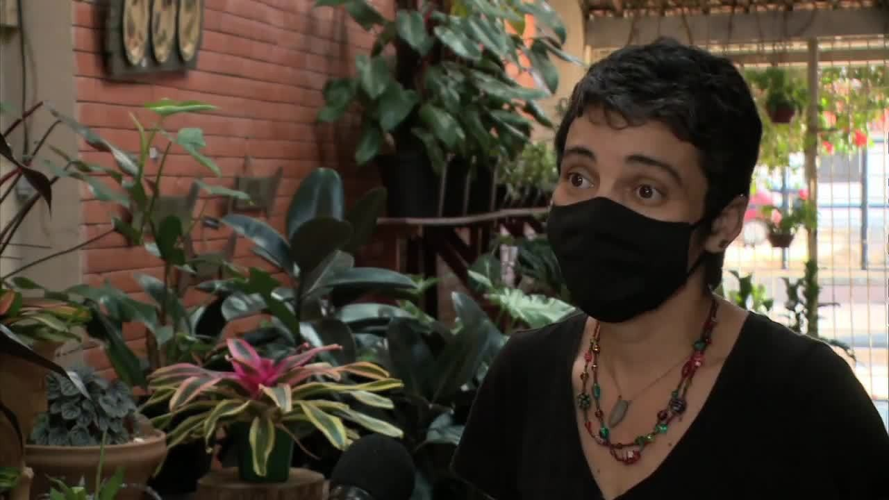 VÍDEOS: Gazeta Rural de domingo, 27 de setembro