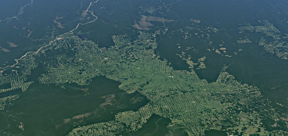 Imagem de satélite mostra avanço do pasto em Rondônia.  — Foto: Reprodução/Earth Studio