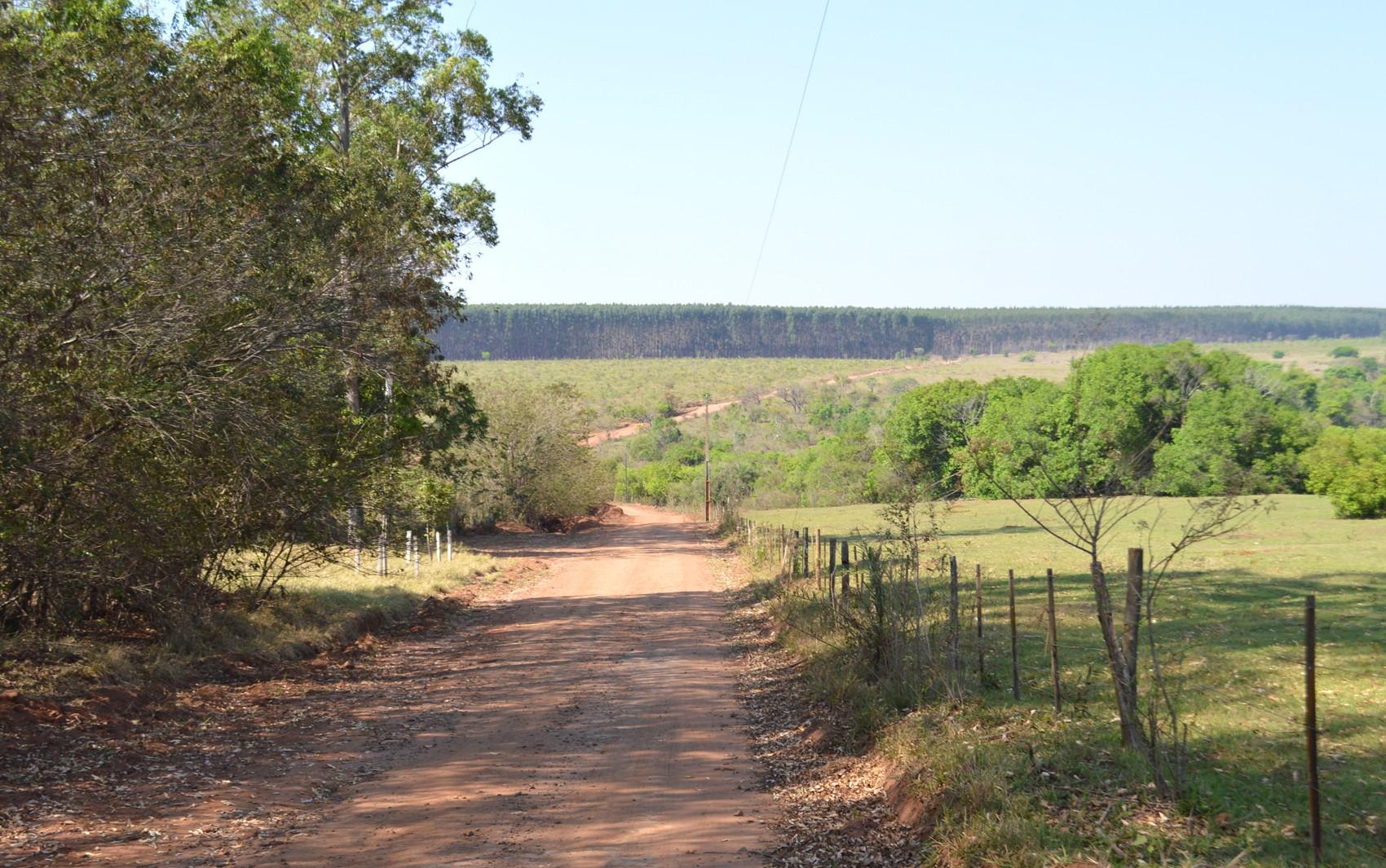 MS tem 31,4 mil produtores rurais que têm de se recadastrar para manter descontos na conta de energia elétrica  - Notícias - Plantão Diário