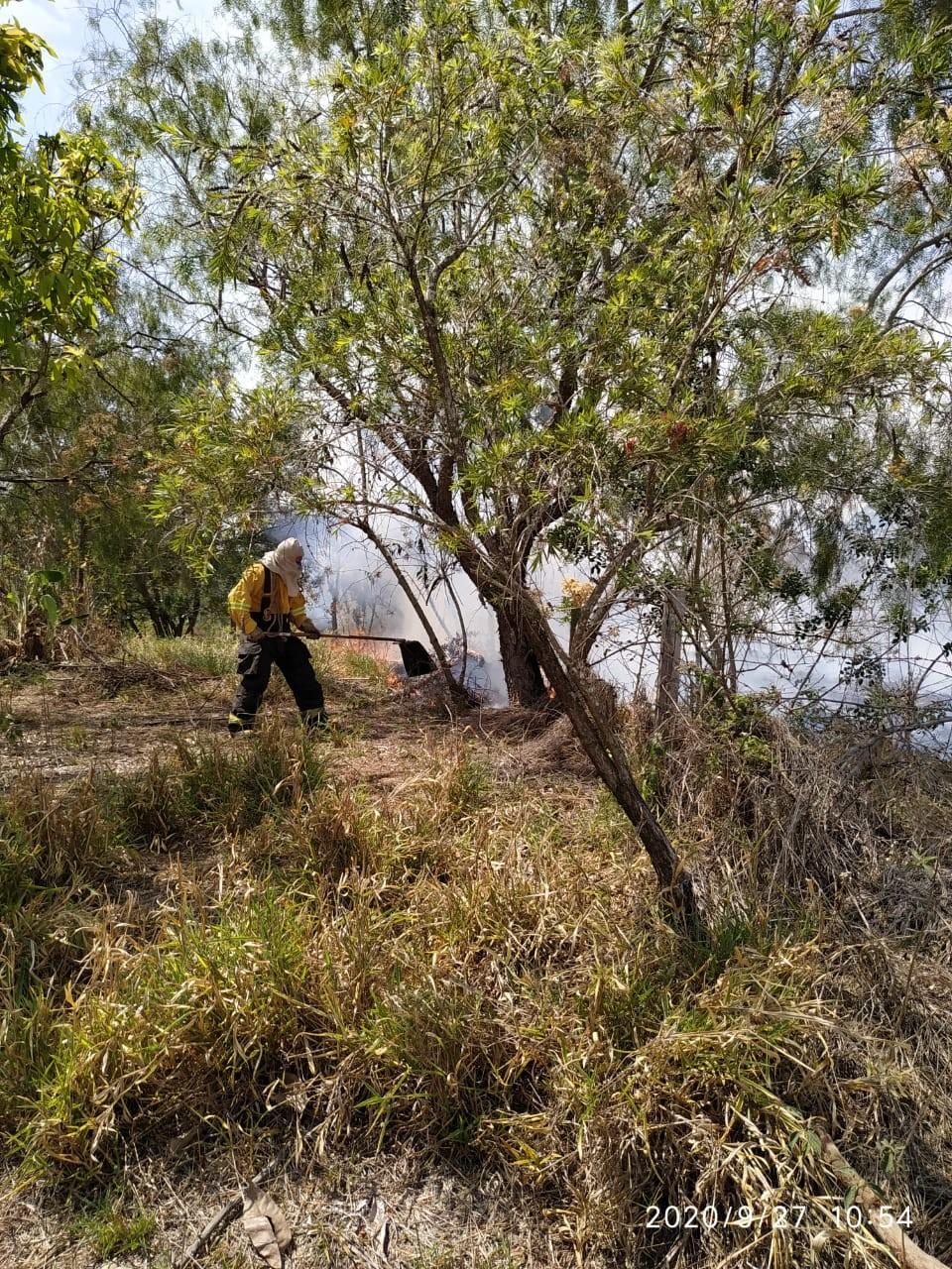 Bombeiros combatem queimada às margens de rodovia em Tietê